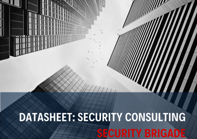 Datasheet - Security Audit Services