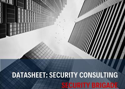 Datasheet - Security Audit Services